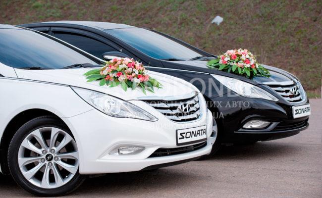 Hyundai_Sonata_2013_white_18