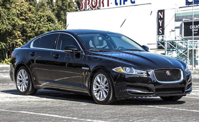 Jaguar_2014_7