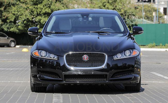 Jaguar_2014_9