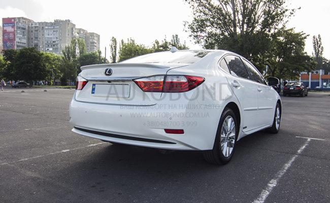 Lexus_white_6381_9